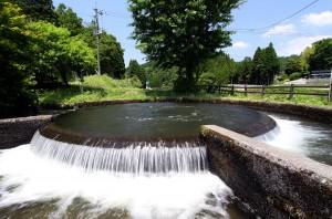 通潤用水の円形分水。内側の円筒からあふれた水が、潤す水田の面積に応じて仕切られた外側の円筒を経て、各方面に延びる用水路に送水される仕組みです。