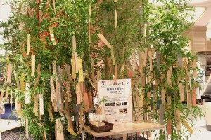 昨年の三越日本橋本店の笹飾り